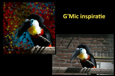 Toekan - G'Mic bewerking in Gimp
