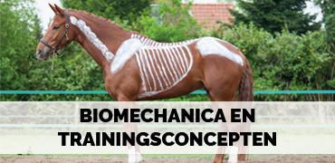 Biomechanica en trainingsconcepten