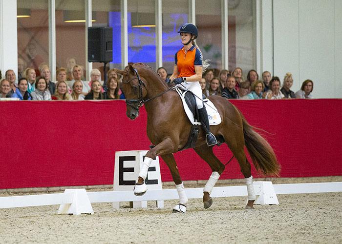 Hoefslag masterclass rijden van jonge paarden