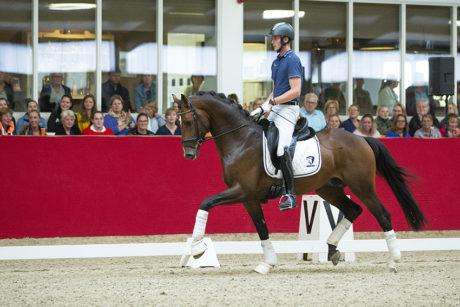 Hoefslag Masterclass rijden van een driejarig paard