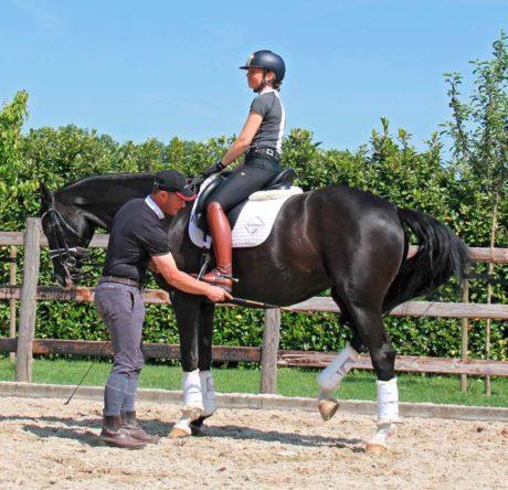 tristan tucker hoe leren paarden