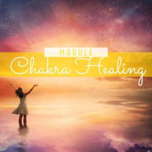 Chakra Healing programma om diepgaand jouw Ziel in jouw lichaam binnen te laten en jouw leven te helen.
