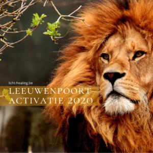 Quantum Healing Leeuwenpoort 2020, zet jouw Zonnevlecht open en vind de kracht in jezelf terug.
