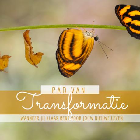 Transformeer jouw Energie, Denken en jouw Lichaam door Quantum Healing en de 7 Hermetische Principes